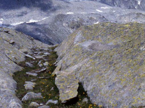 Ghiacciaio Nardis – Monte Nero