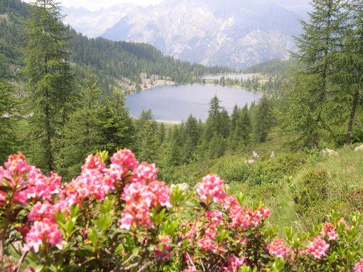 Lago Garzonè