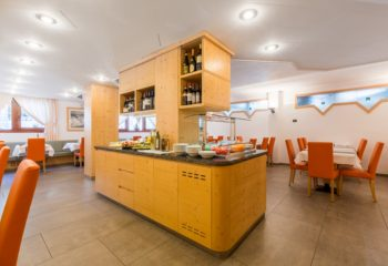 Hotel Alpina_sala