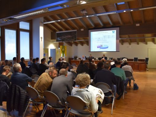 Sono 29 i membri del nuovo Comitato di Gestione del Parco Naturale Adamello Brenta