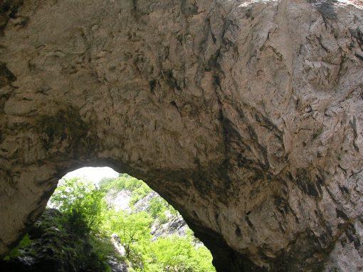 Arca di Fraporte (Stenico)