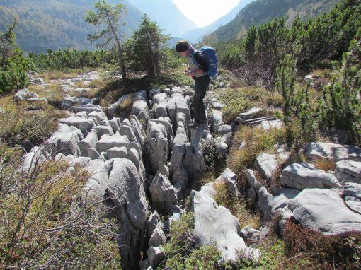 Sugli alpeggi di Malga Senaso