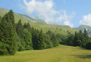 San Lorenzo-Dorsino Monte-Prada