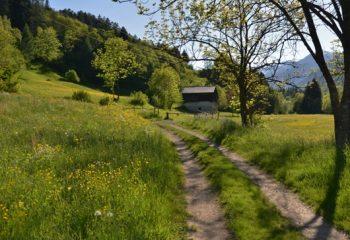 Commezzadura sentiero Nordic