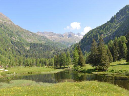 Laboratorio Natura – Il valore della Biodiversità