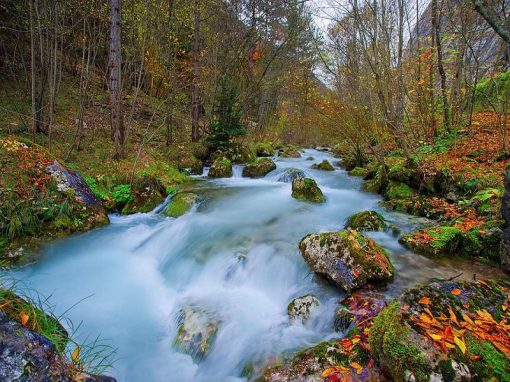 Sentiero delle Antiche Segherie | Val di Tovel
