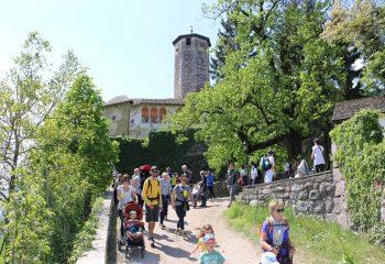 Ville d'Anaunia Ville in fiore Castel Valer foto Giuseppe Mendini