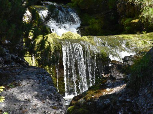 Vallesinella | Cascate Alte