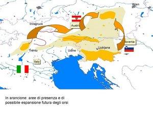 mappa mostrante il possibile sviluppo degli orsi sulle Alpi