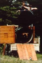 il rilascio dell'orsa Kirka nel Parco (Tonina)