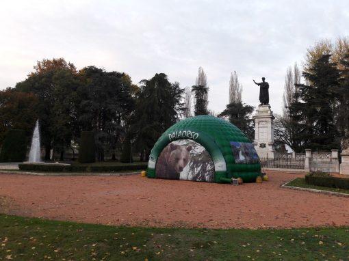 Il Palaorso in piazza Virgiliana a Mantova