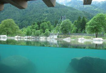 Acqua Life lago foto Chiara