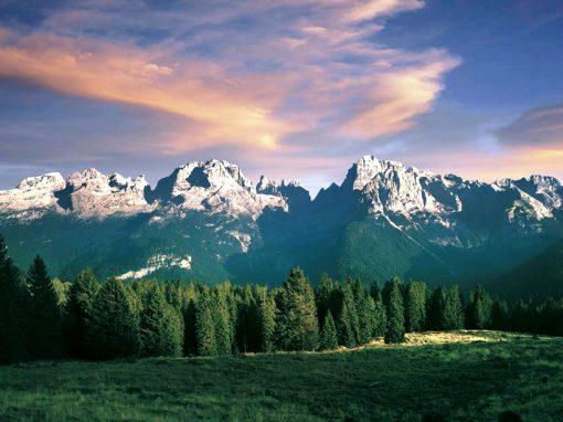Joseph Masè: quale futuro per il patrimonio naturale del Trentino?
