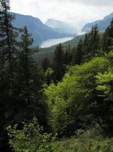 Lago Molveno Valle delle Seghe foto Michele Zeni