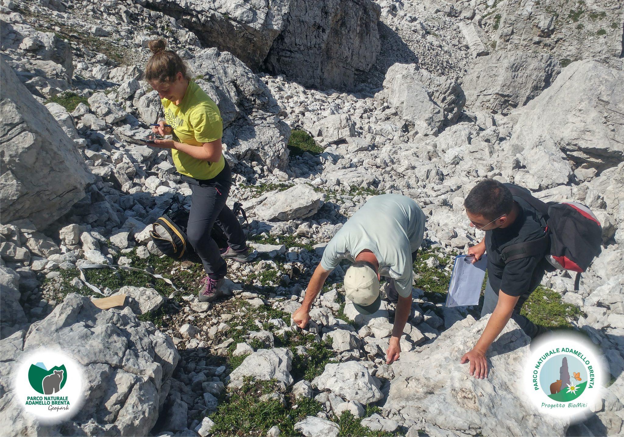 Progetti geologici
