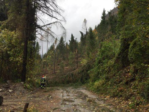 Maltempo: il Parco dà conto dei danni e raccoglie informazioni