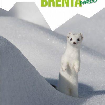 Adamello Brenta Parco Copertina 2 - 2018