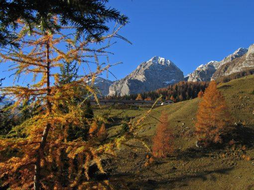 Aggiornamenti sul presidio delle valli del Parco