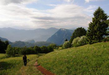 Prada landscape