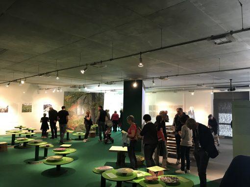 """A Pinzolo inaugurata la nuova mostra """"Montagne Verdi"""""""
