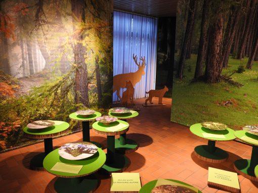 Montagne Verdi: la mostra si trasferisce ad Andalo