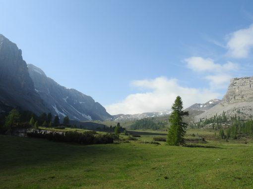 Traversata nel Parco: lungo la Via GeoAlpina dal Passo Grostè al Lago di Tovel