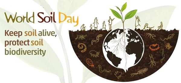 Giornata Mondiale del Suolo: il 9 dicembre webinar online gratuito