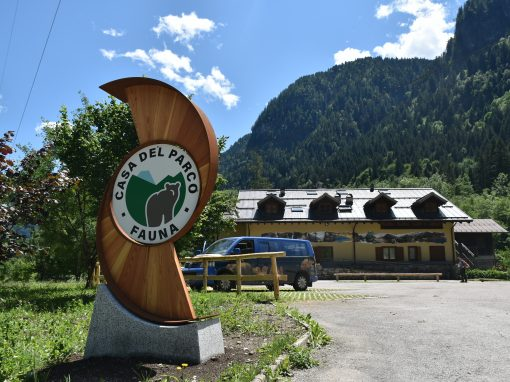 """Apre i battenti, domani 10 luglio, la nuova Casa del Parco """"fauna"""" in loc. Pracul (Valdaone)"""