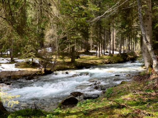 Convenzione fra il Parco Naturale Adamello Brenta e il Parco Fluviale della Sarca:lunedì 27 a Tionela conferenza stampa