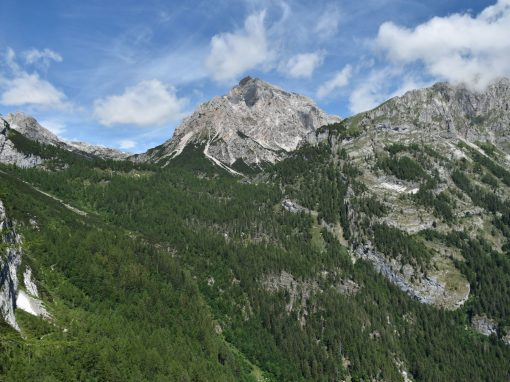 App Trentino Salute+ : sabato a Campodenno e Cavedago due camminate con esperti del Parco e della Provincia per sperimentarla